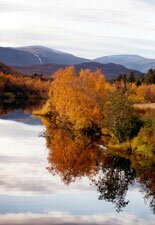 Lapland silence