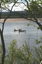 Salmon fishing in Tana river